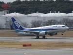 ばっきーさんが、成田国際空港で撮影した全日空 737-781/ERの航空フォト(写真)