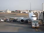 show0303さんが、宮崎空港で撮影したANAウイングス 737-5L9の航空フォト(写真)