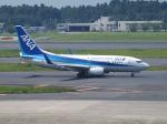 鷹71さんが、成田国際空港で撮影した全日空 737-781の航空フォト(写真)