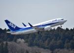 えるあ~るさんが、成田国際空港で撮影した全日空 737-781/ERの航空フォト(写真)