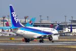 パンダさんが、成田国際空港で撮影した全日空 737-781/ERの航空フォト(写真)