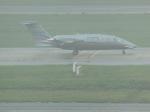 ぺペロンチさんが、ノイバイ国際空港で撮影したヨンウォン貿易航空部 P.180 Avanti IIの航空フォト(写真)