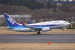 安芸あすかさんが、成田国際空港で撮影した全日空 737-781/ERの航空フォト(写真)