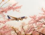allnipponairwaysさんが、成田国際空港で撮影したLOTポーランド航空 787-8 Dreamlinerの航空フォト(写真)