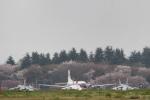 はるたかさんが、入間飛行場で撮影した航空自衛隊 YS-11-105FCの航空フォト(写真)