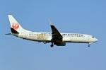 sonnyさんが、成田国際空港で撮影した日本航空 737-846の航空フォト(写真)