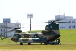 makorigeさんが、函館駐屯地で撮影した航空自衛隊 CH-47J/LRの航空フォト(写真)