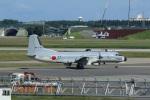 Airway-japanさんが、三沢飛行場で撮影した航空自衛隊 YS-11A-402EBの航空フォト(写真)