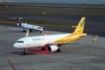 なごやんさんが、中部国際空港で撮影したバニラエア A320-214の航空フォト(写真)