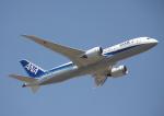 ミシュラン787さんが、成田国際空港で撮影した全日空 787-881の航空フォト(写真)