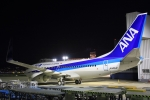 リクパパさんが、伊丹空港で撮影した全日空 737-781/ERの航空フォト(写真)