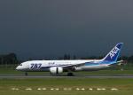 tuckerさんが、鹿児島空港で撮影した全日空 787-881の航空フォト(写真)