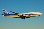 フリューゲルさんが、成田国際空港で撮影した全日空 747-481の航空フォト(写真)