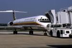 EarthScapeさんが、南紀白浜空港で撮影した日本エアシステム MD-81 (DC-9-81)の航空フォト(写真)