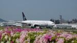 ふるぴーさんが、松山空港で撮影した全日空 777-281の航空フォト(写真)