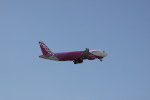 しかばねさんが、那覇空港で撮影したピーチ A320-214の航空フォト(写真)