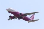 yuu-kiさんが、関西国際空港で撮影したピーチ A320-214の航空フォト(写真)