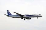 Airbus350さんが、福岡空港で撮影した全日空 A321-131の航空フォト(写真)
