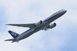miyapppさんが、羽田空港で撮影した全日空 787-9の航空フォト(写真)