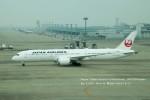 かみきりむしさんが、中部国際空港で撮影した日本航空 787-9の航空フォト(写真)