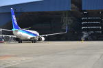 md11jbirdさんが、伊丹空港で撮影した全日空 737-781/ERの航空フォト(写真)