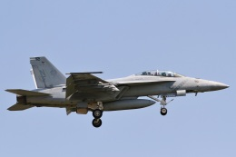 camelliaさんが、厚木飛行場で撮影したアメリカ海軍 F/A-18F Super Hornetの航空フォト(写真)