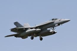camelliaさんが、厚木飛行場で撮影したアメリカ海軍 F/A-18E Super Hornetの航空フォト(写真)