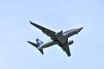 えるあ~るさんが、羽田空港で撮影した全日空 737-781/ERの航空フォト(写真)