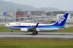 zettaishinさんが、伊丹空港で撮影した全日空 737-781/ERの航空フォト(写真)