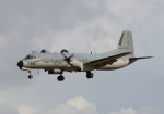 SHIKIさんが、千歳基地で撮影した航空自衛隊 YS-11A-402EBの航空フォト(写真)