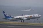 VIPERさんが、羽田空港で撮影した全日空 737-881の航空フォト(写真)