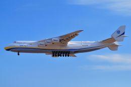 orbis001さんが、成田国際空港で撮影したアントノフ・エアラインズ An-225 Mriyaの航空フォト(写真)
