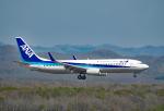 なおさんが、新千歳空港で撮影した全日空 737-881の航空フォト(写真)