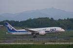 神宮寺ももさんが、高松空港で撮影した全日空 787-881の航空フォト(写真)