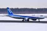 hirohiro77さんが、新千歳空港で撮影した全日空 A320-211の航空フォト(写真)