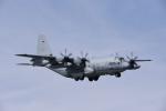 Aurora56さんが、厚木飛行場で撮影したアメリカ海軍 C-130 Herculesの航空フォト(写真)