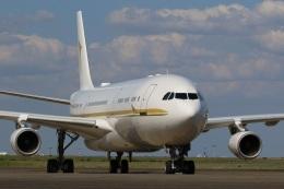 肉食獣さんが、羽田空港で撮影したアルファ・スター A340-212の航空フォト(写真)