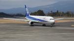maysnowさんが、鹿児島空港で撮影した全日空 767-381の航空フォト(写真)