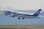 ドラパチさんが、羽田空港で撮影した全日空 787-881の航空フォト(写真)