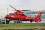 せぷてんばーさんが、東京ヘリポートで撮影した東京消防庁航空隊 AS365N3 Dauphin 2の航空フォト(写真)