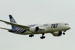 raiden0822さんが、成田国際空港で撮影した全日空 787-8 Dreamlinerの航空フォト(写真)
