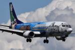 romyさんが、ペインフィールド空港で撮影したアラスカ航空 737-490の航空フォト(写真)