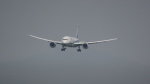 maysnowさんが、鹿児島空港で撮影した全日空 787-881の航空フォト(写真)