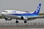 kansai-spotterさんが、伊丹空港で撮影したANAウイングス 737-54Kの航空フォト(写真)