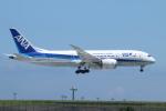 ceskykrumlovさんが、羽田空港で撮影した全日空 787-881の航空フォト(写真)