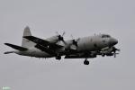 妄想竹さんが、厚木飛行場で撮影した海上自衛隊 P-3Cの航空フォト(写真)