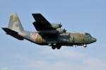 妄想竹さんが、厚木飛行場で撮影した航空自衛隊 C-130Hの航空フォト(写真)