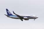 しかばねさんが、成田国際空港で撮影した全日空 737-781/ERの航空フォト(写真)