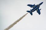 盆栽さんが、旭川駐屯地で撮影した航空自衛隊 T-4の航空フォト(写真)