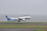 Gpapaさんが、羽田空港で撮影した全日空 787-881の航空フォト(写真)